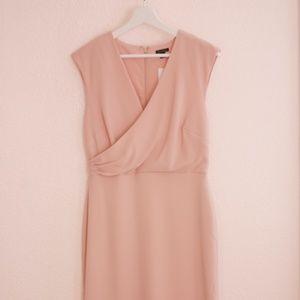 NEW Ann Taylor Blush Sheath Midi Dress